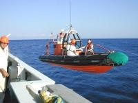 1155 - Sbarco con Workboat.jpg